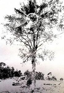 2 in 1 tree